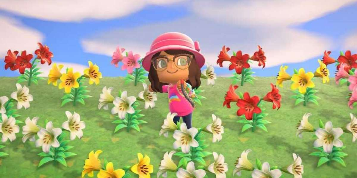Animal Crossing Items Crossing New Horizons might be a real existence